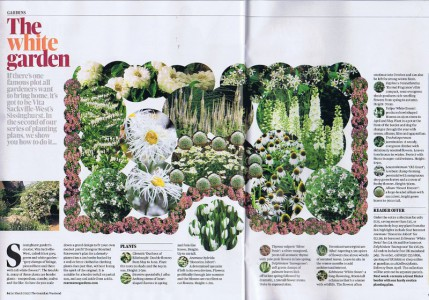 Rosewarne Gardens, Guardian Weekend MAgazine, White Garden