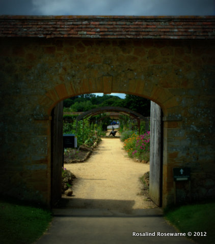 BARRINGTON COURT - WALLED GARDEN
