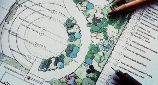 PLANTING_DESIGN_BEDFORDSHIRE.JPG