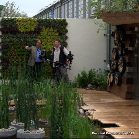 RBC Blue Water Roof garden: Nigel Dunett