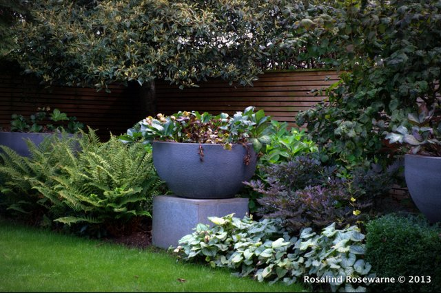 Socking great chunks of stone form planters full of Hellebores