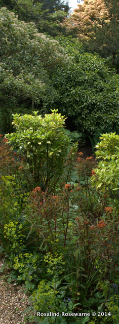 Le Manoir Garden Walks
