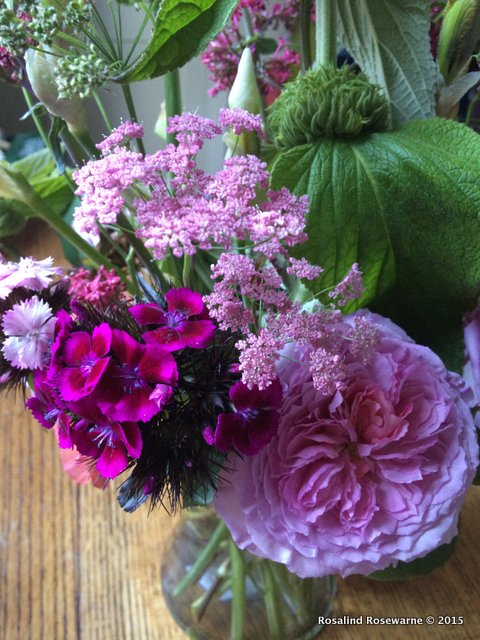 Cut flowers with Rosa James Galway (probably!)