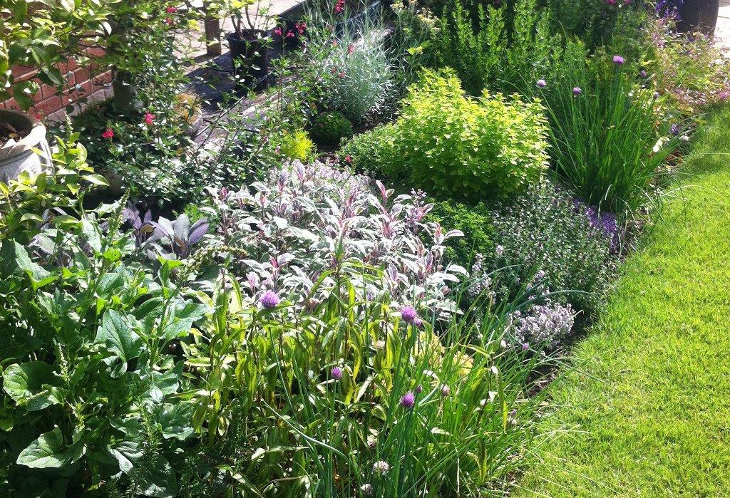 Rosewarne Garden Designs | Bedfordshire Garden & Landscape & Garden