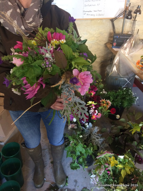 Common Farm Flowers - Sharon showing off gorgeous flower bunches