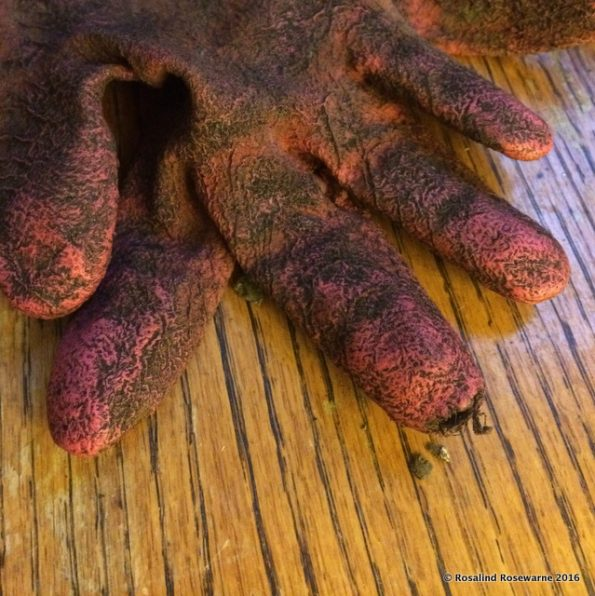 Master Gardener gloves failing at the finger tips.